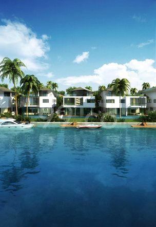 Pearl Island Cover