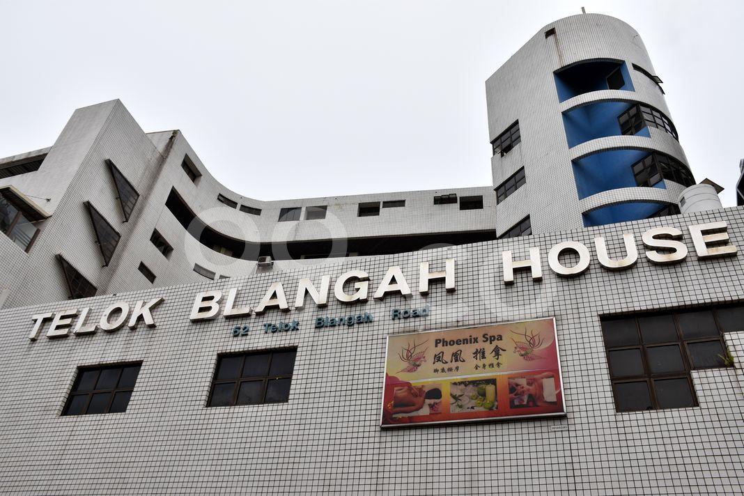 Telok Blangah House  Logo