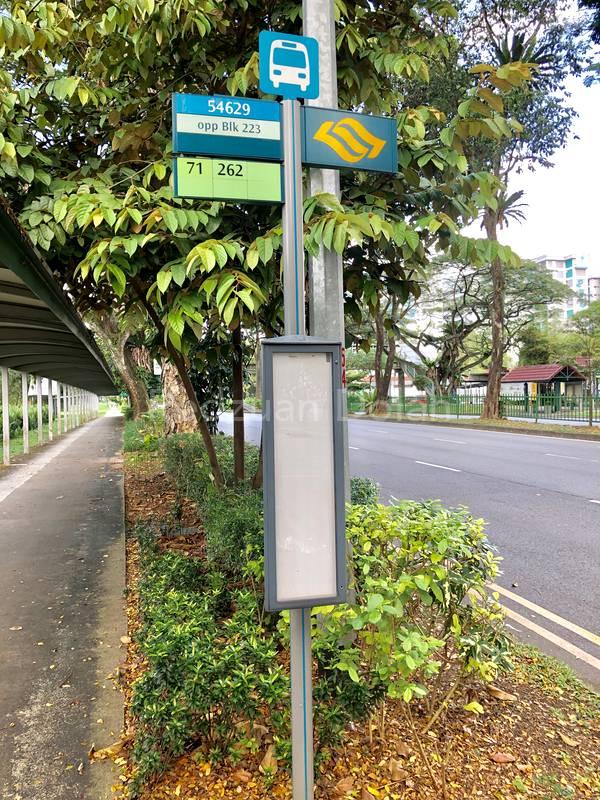 Bus Stop opposite of 223