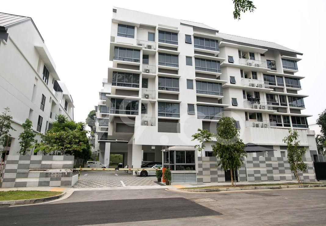Primo Residences  Elevation