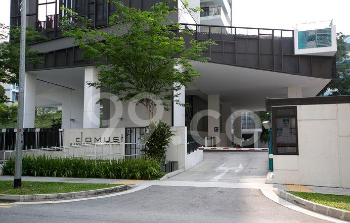Domus Condo Prices Reviews Property 99 Co