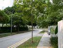 Newton Edge Newton Edge - Street
