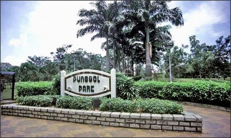 Punggol Park neaarby
