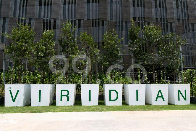 The Viridian The Viridian - Logo