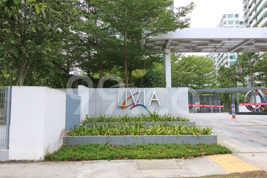 Livia  Logo
