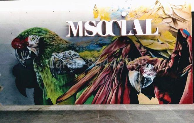 M Social