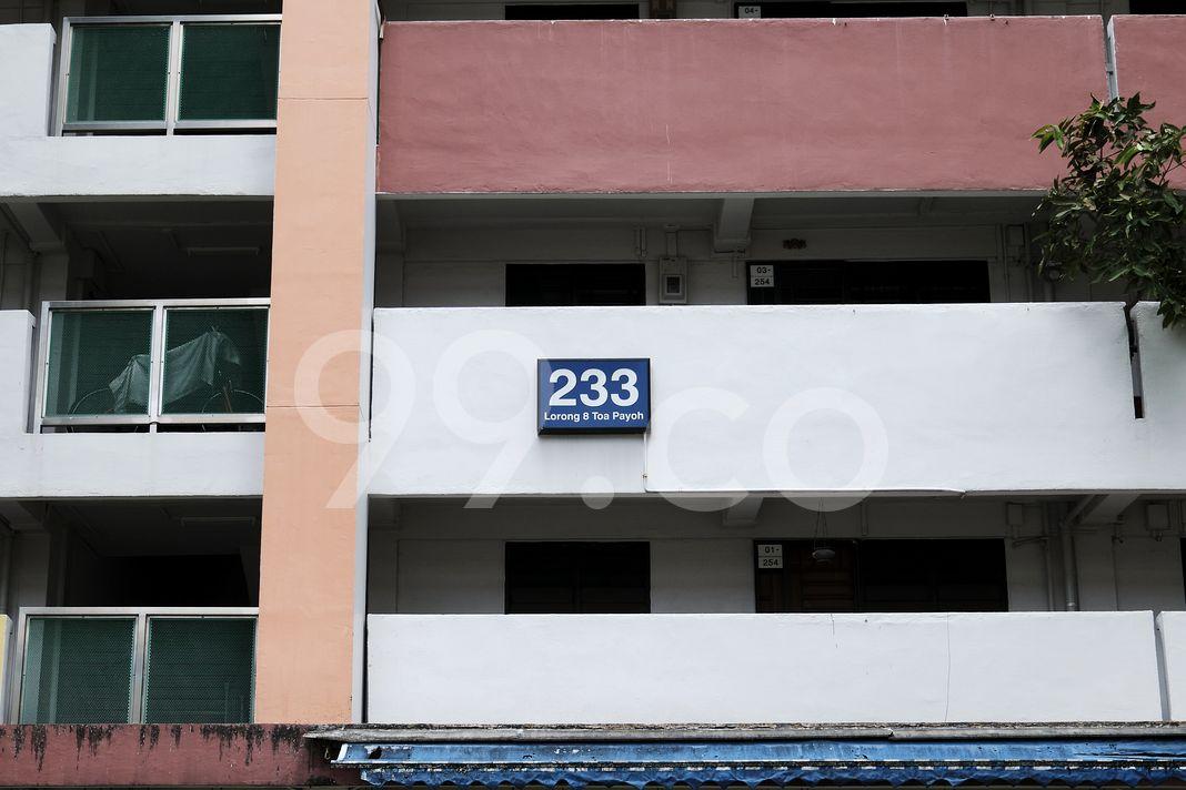 Block 233 Toa Payoh Eight