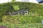 The Meyerise - Logo