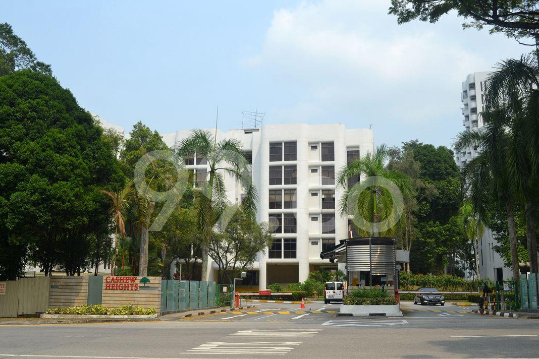Cashew Heights Condominium  Elevation