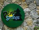 Pine Springs Pine Springs - Logo