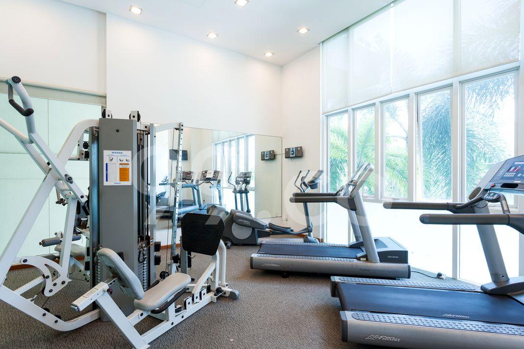 The Jade  Gym