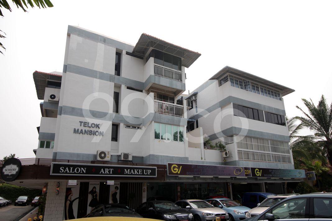 Telok Mansion  Elevation