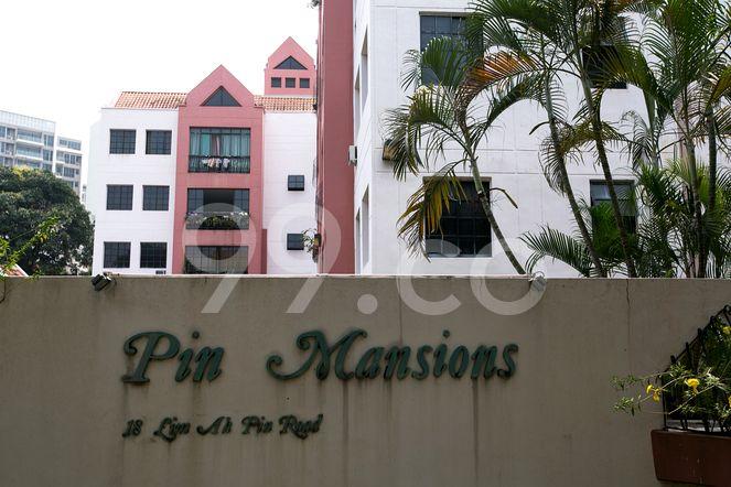 Pin Mansions Pin Mansions - Logo