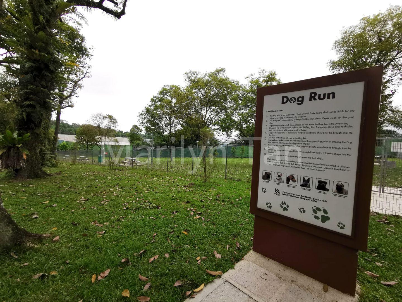 Dog Run at Sembawang Park