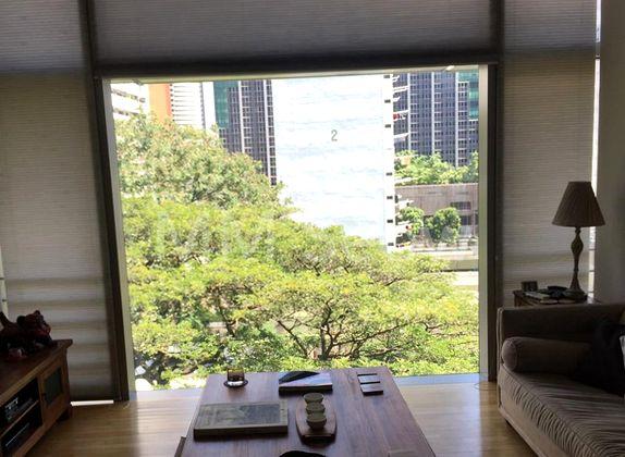 Apt overlooking treetops view