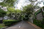 Gardenvista - Street