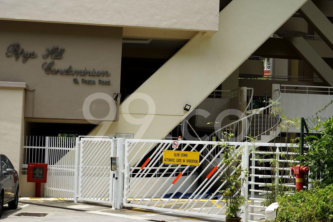 Pepys Hill Condominium  Entrance