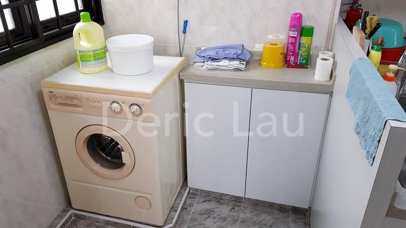 Washing machine and laundry area