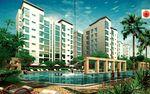 Dahlia Park Condominium - Cover