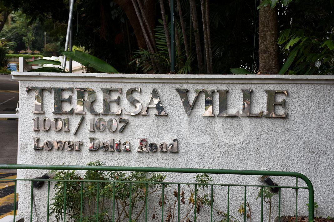Teresa Ville  Logo