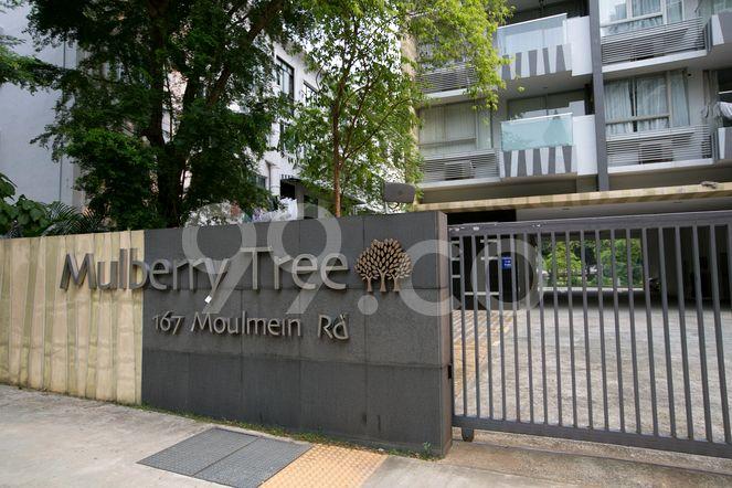 Mulberry Tree Mulberry Tree - Logo