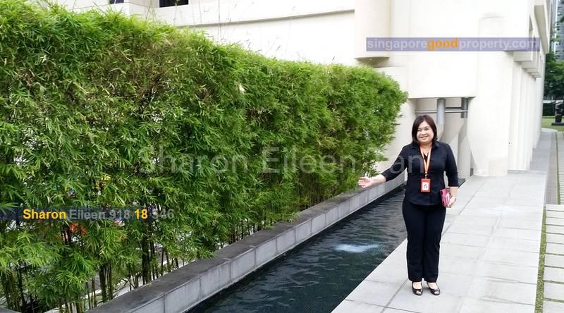 Water Feature - sharoneileentan.com