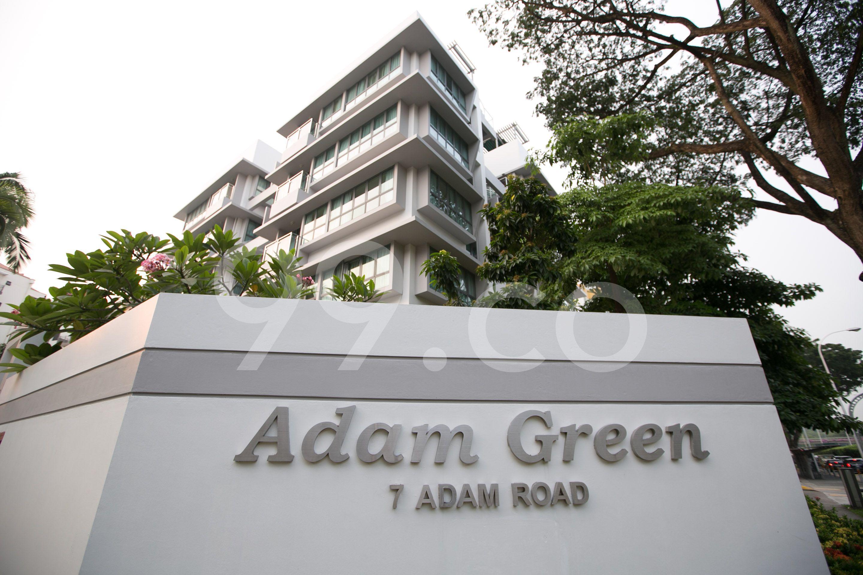 Adam Green Adam Green - Logo