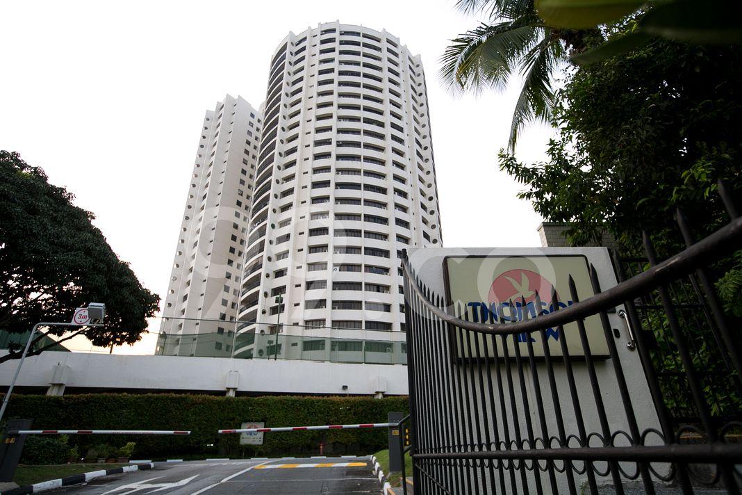 Thomson View Condominium  Other