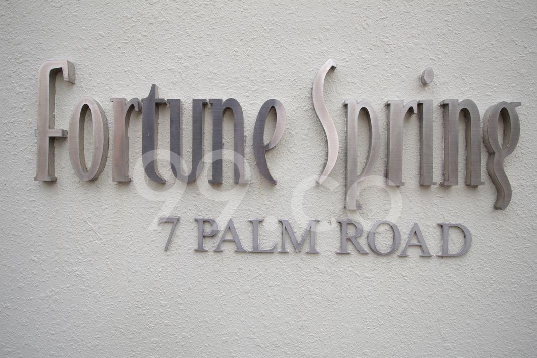 Fortune Spring  Logo