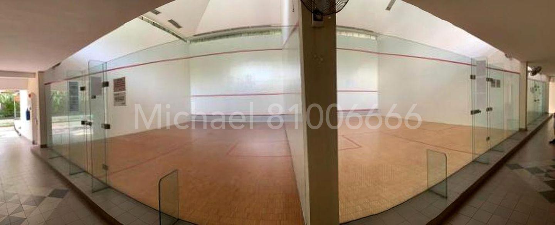 3 squash court