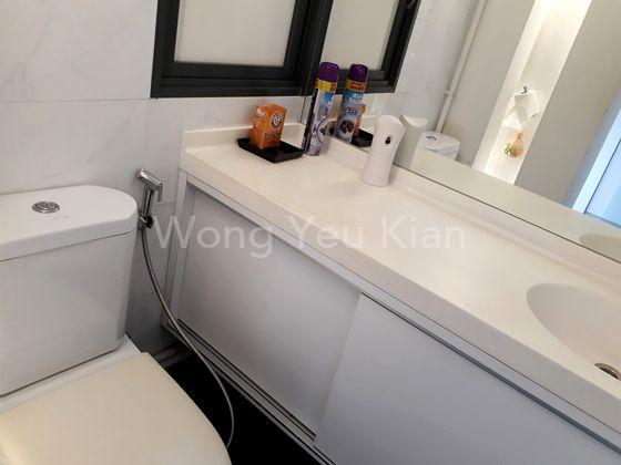 Designer's Decor Toilet Area.