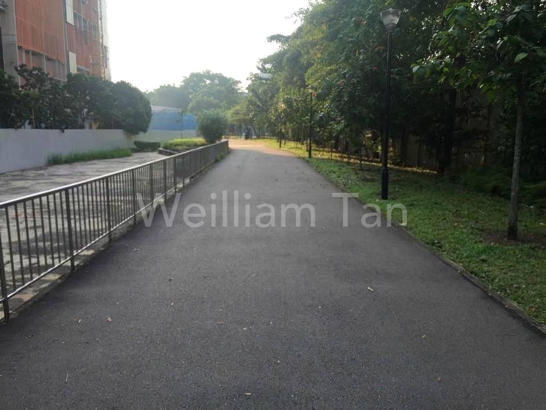 Park walk just behind