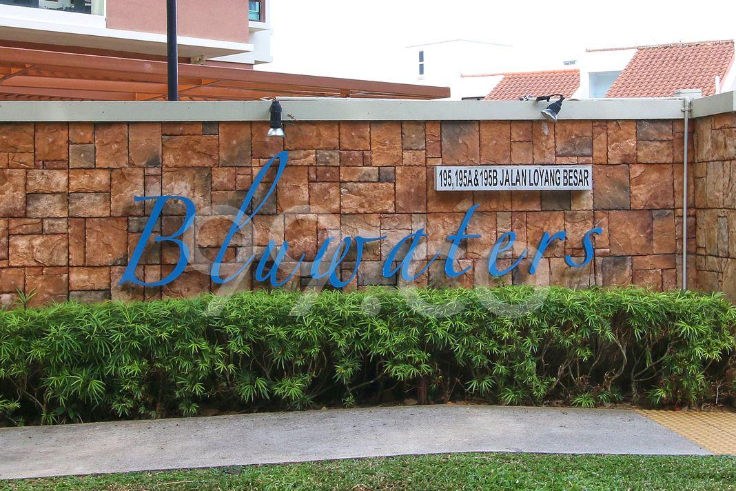 Bluwaters  Logo