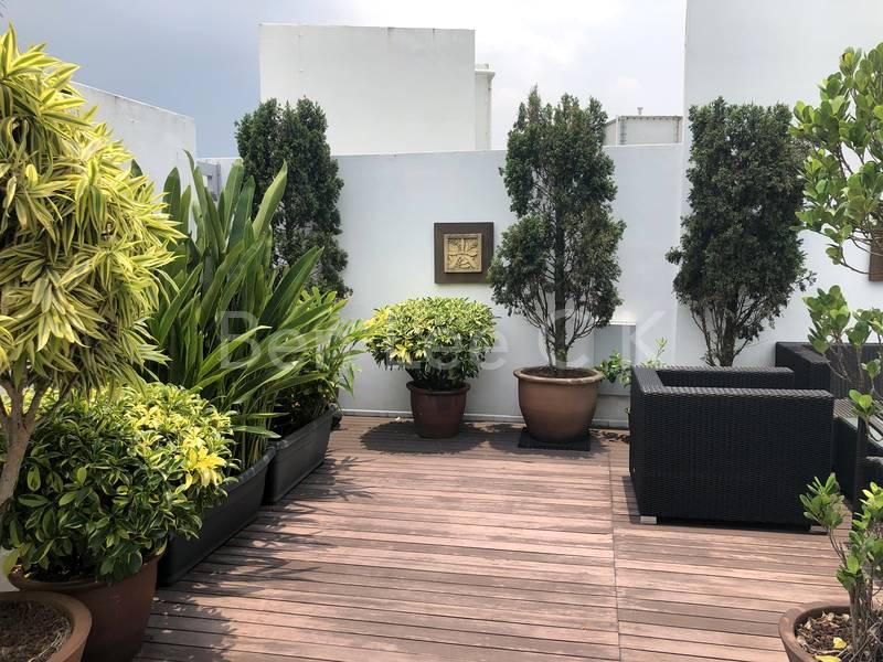 roof terrace garden