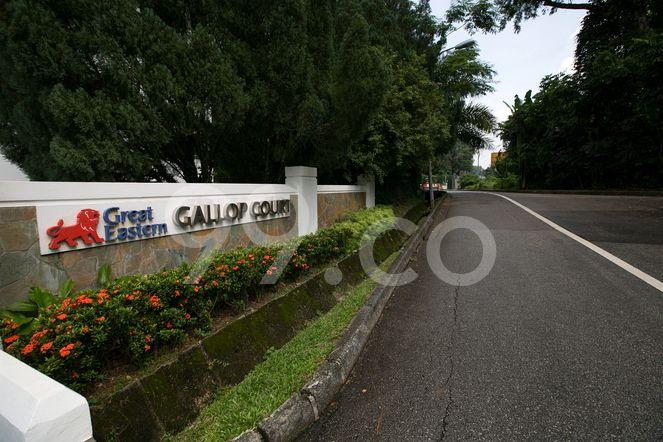 Gallop Court Gallop Court - Street