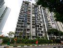 Blossom Residences Blossom Residences - Elevation