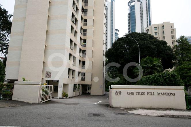 One Tree Hill Mansions One Tree Hill Mansions - Entrance