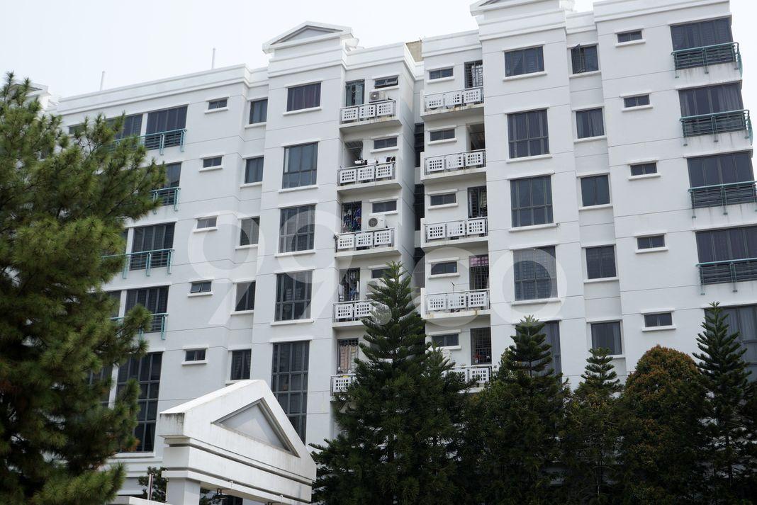Aston Mansions  Elevation