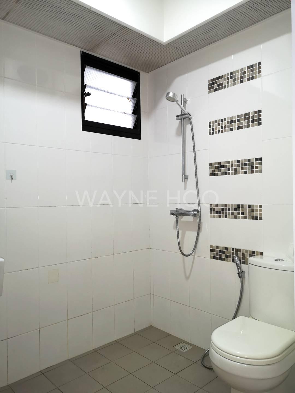 Segar Vale 546C Common toilet