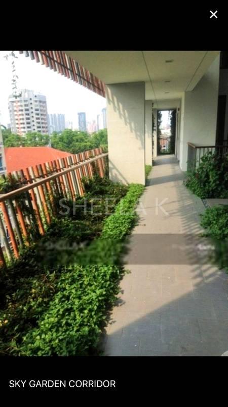 Rearside garden