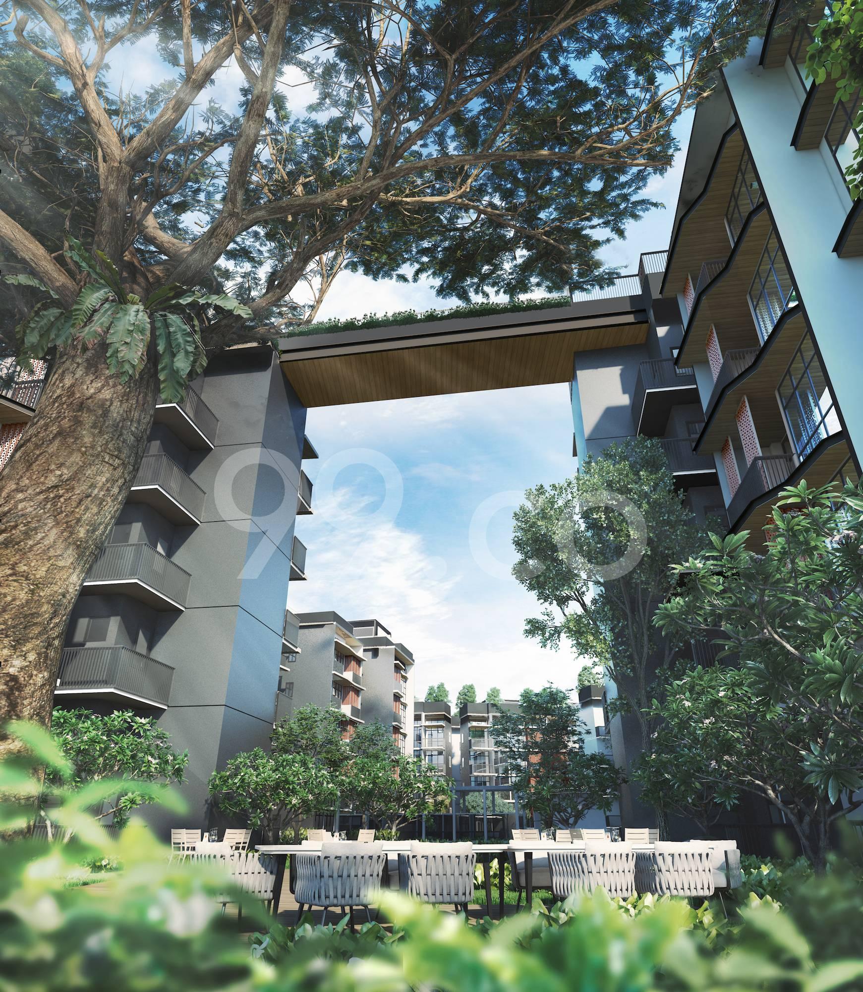 Daintree Residence Garden