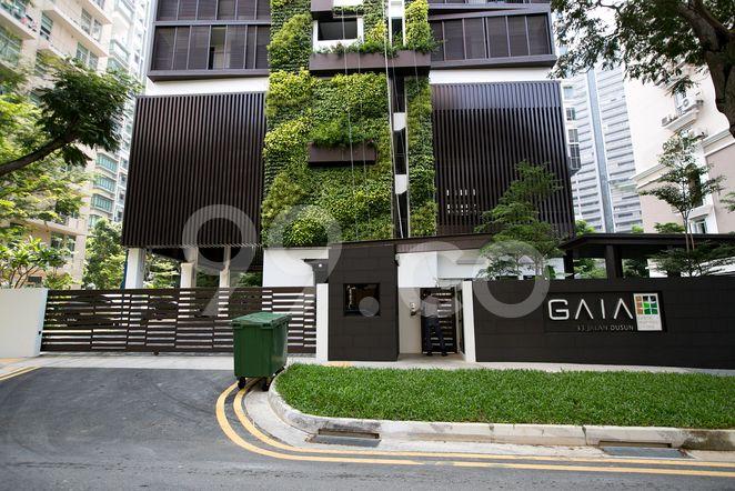 Gaia Gaia - Entrance