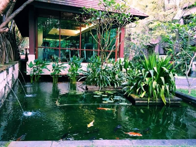 Main Entrance with Koi Pond