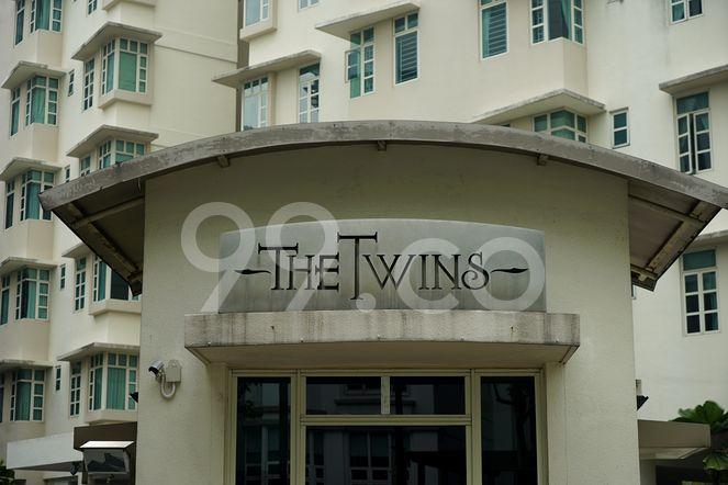 The Twins The Twins - Logo