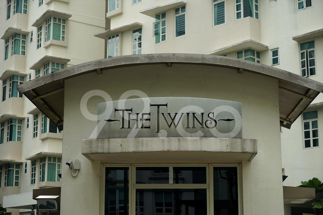 The Twins  Logo