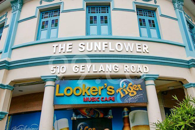 The Sunflower The Sunflower - Logo