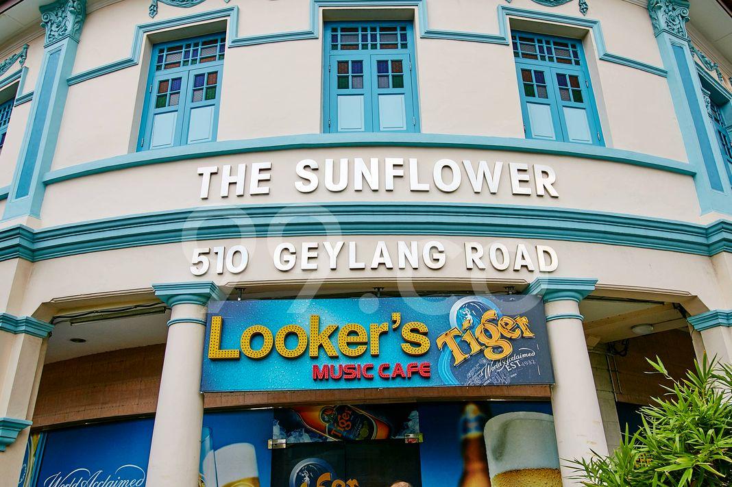 The Sunflower  Logo