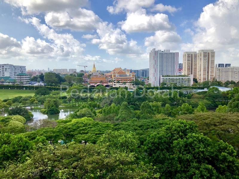 Beautiful View of Bishan-Ang Mo Kio Park from Living Room & Bedroom