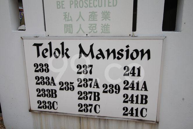 Telok Mansion Telok Mansion - Logo