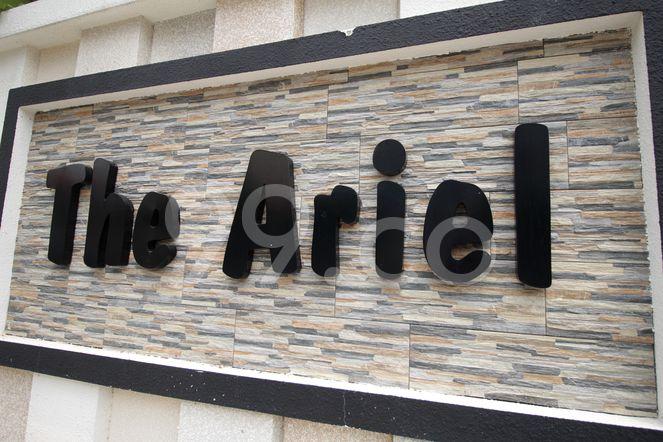 The Ariel The Ariel - Logo